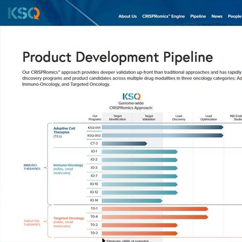 KSQ Therapeutics